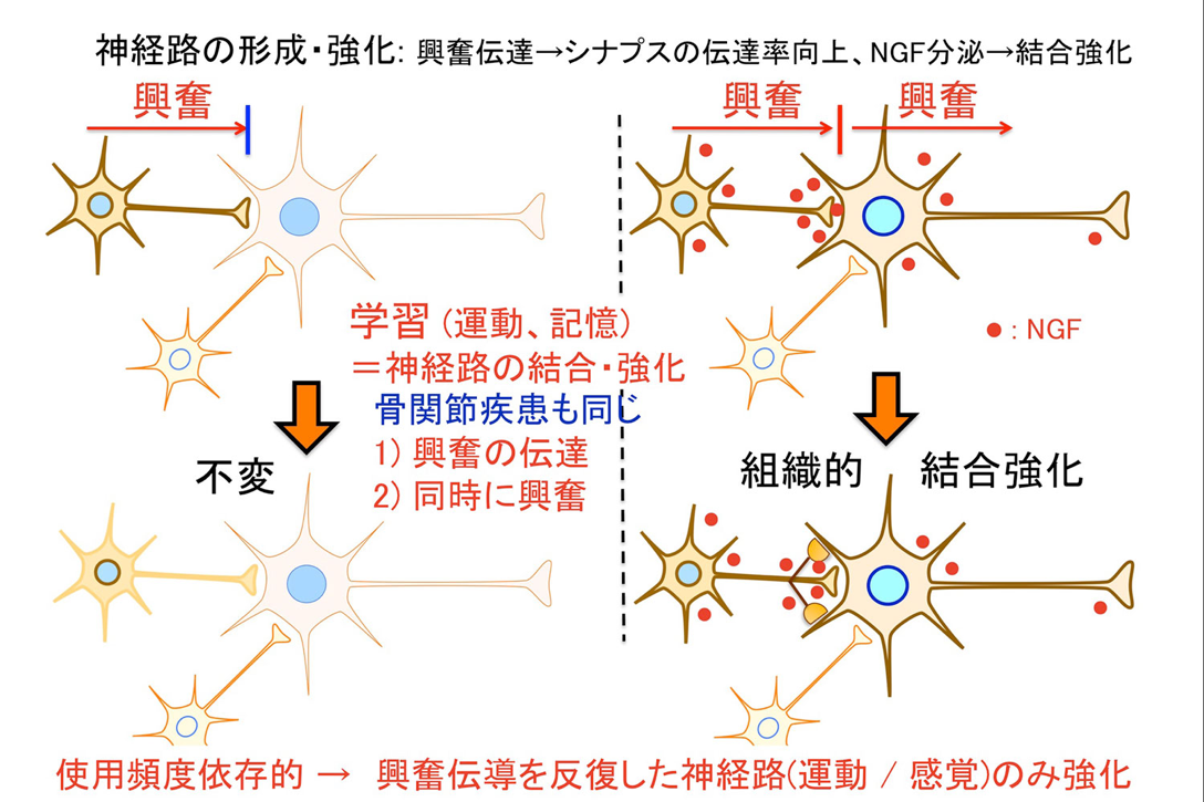 図2png