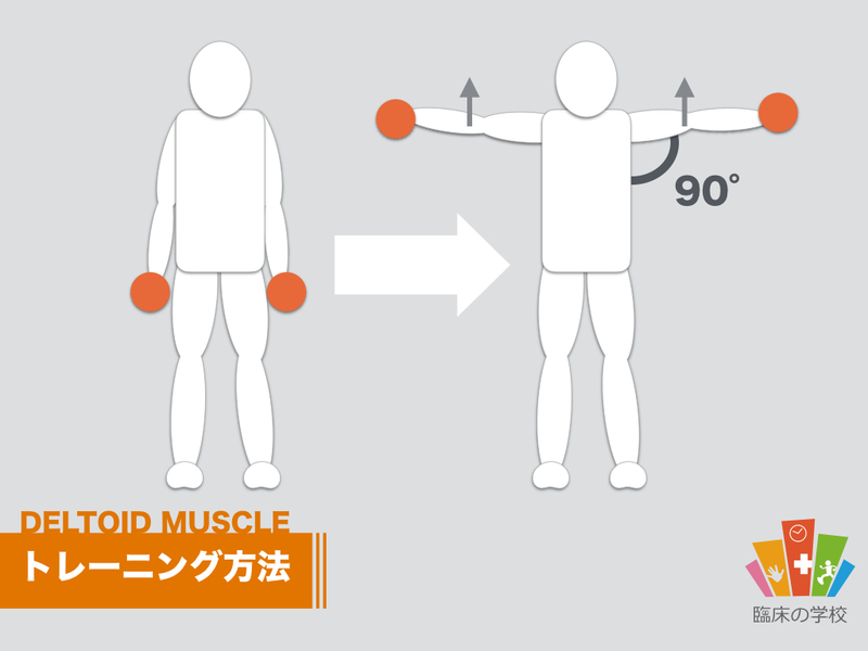 三角筋のトレーニングの図